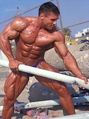Muscle Fibre Recruitment
