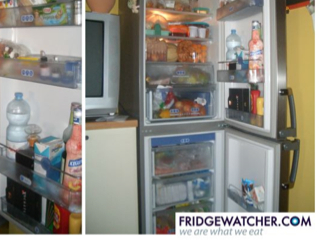 Fridgewatcher