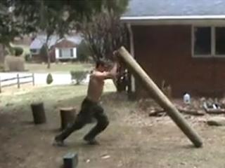 Log Flip