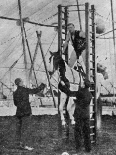 Horse Lifting (using harness lift technique)