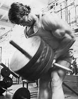 Arnold - T-Bar Row